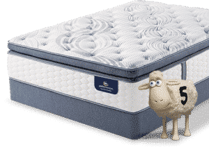 serta perfect sleeper sheep mattress