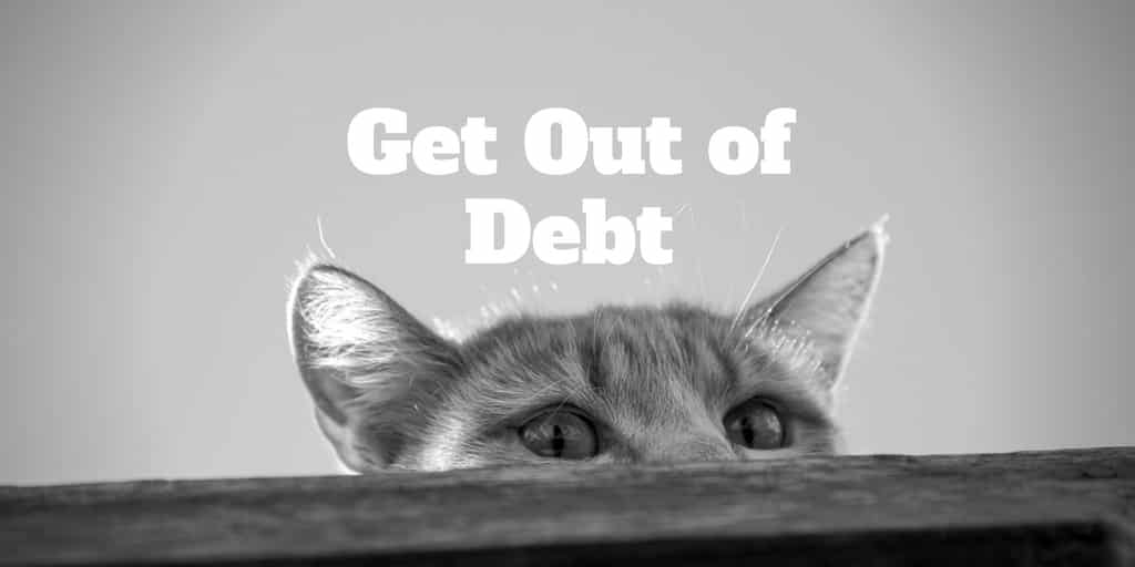 get out of debt by spying