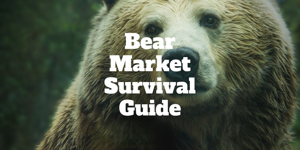 bear market survival guide