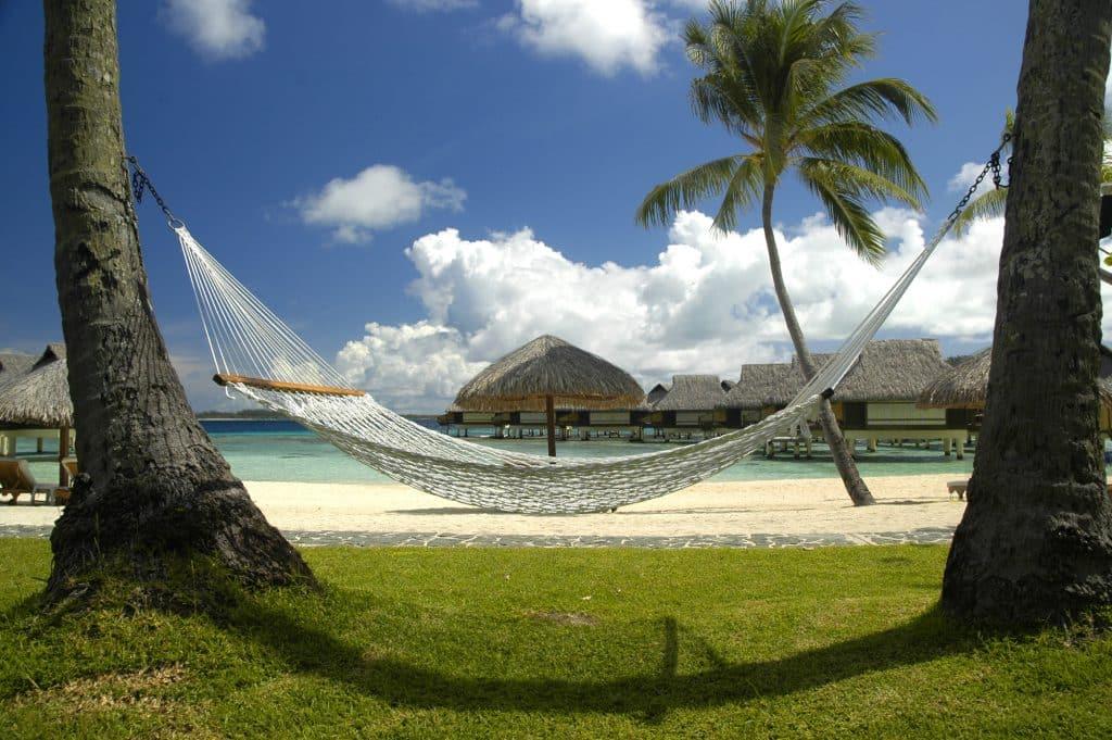 hammock polynesia