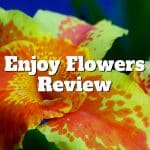 enjoy flowers review