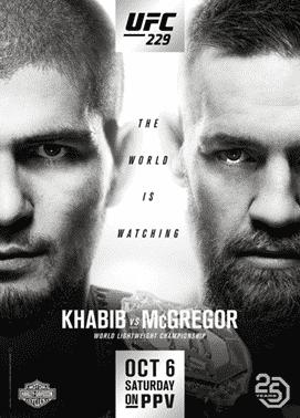 UFC 229 poster
