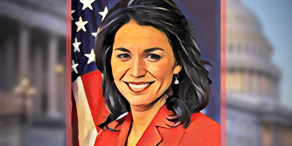 tulsi gabbard net worth