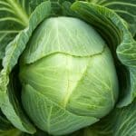 kabbage business loan requirements